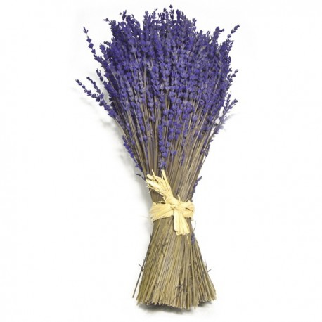 Ramillete de Lavanda Natural 18x45cm
